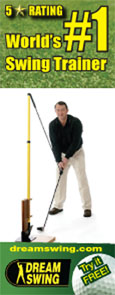 dreamswing golf swing trainer